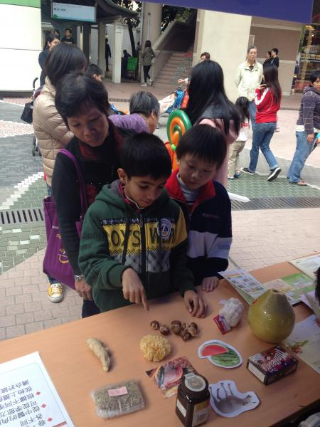 Game Booth on Seasonal Diet in Chinese Medicine